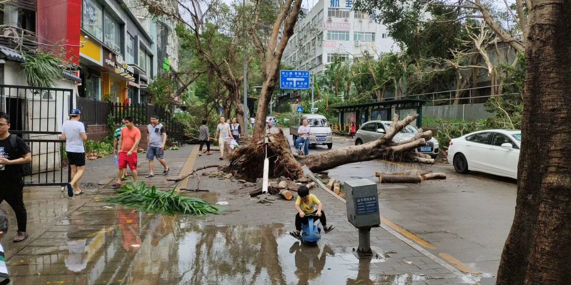 After typhoon